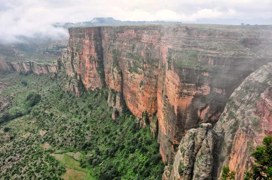 Vanuit Ethiopië is koffie over de wereld verspreid