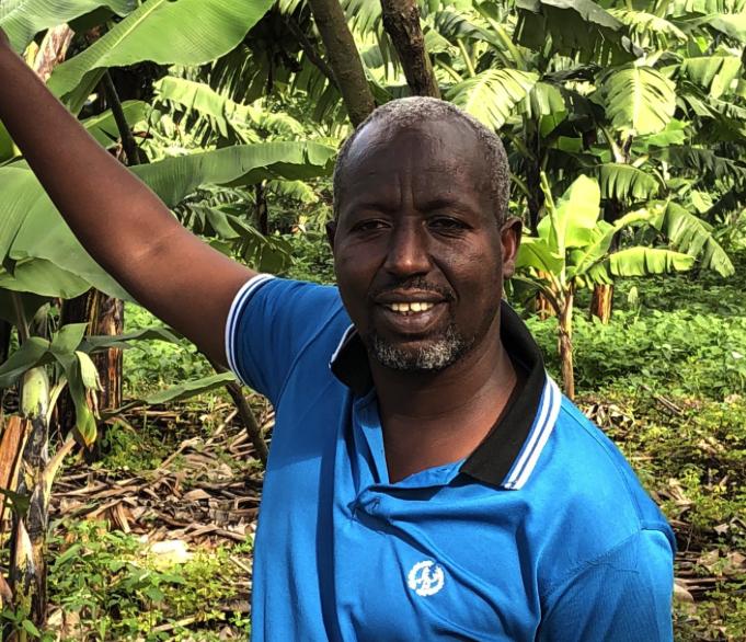Bananenplantage in de Mugina sector in Rwanda