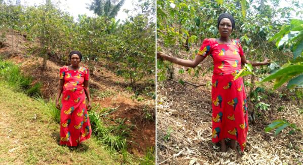 Leoncie heeft een Pure Africa microkrediet voor haar koffieplantage